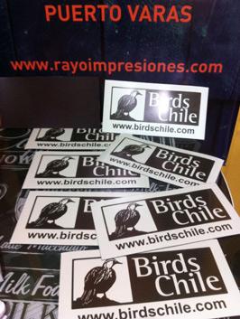 IMANES-BIRDS