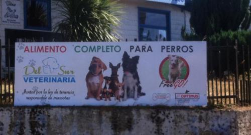 Letrero-veterinaria-del-Sur